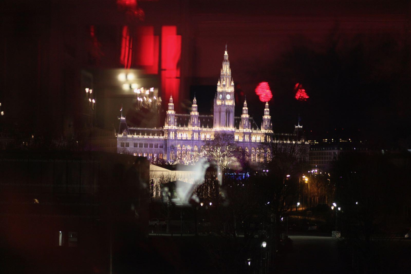 2019_01_18_Garde_BallderOffiziere_Hofburg (1) - 40 of 98